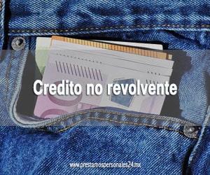 Credito no revolvente